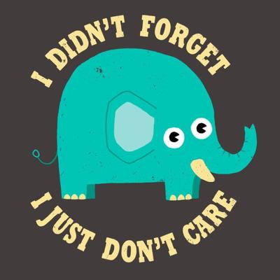 an-elephant-never-cares-1