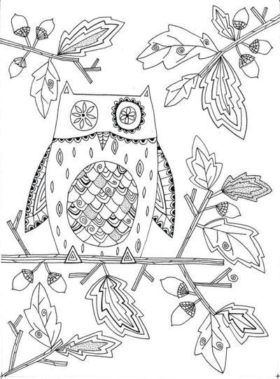 liz-and-kate-autumn-owl