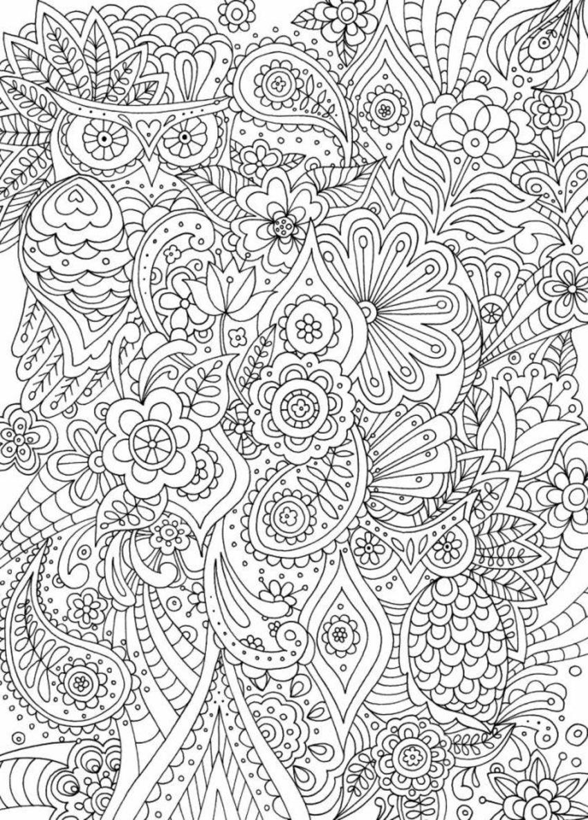Owls Floral Adult Colouring Line Art