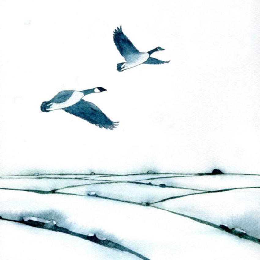 Snowy Fields Canada Geese Two 100dpi