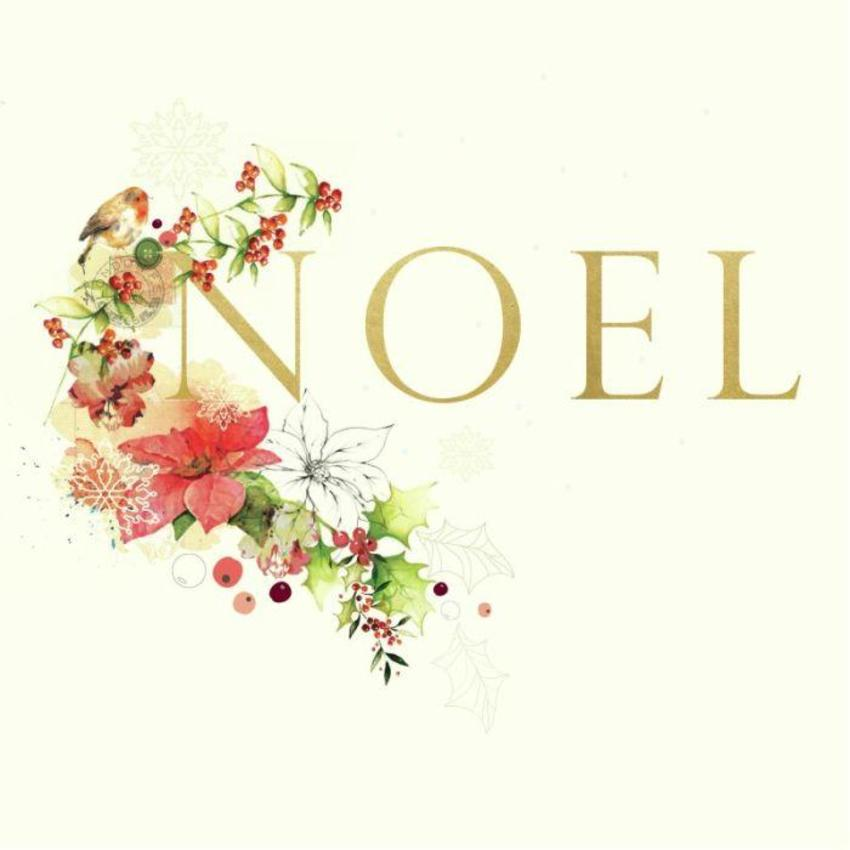 Xmas Noel Design New Robin-01