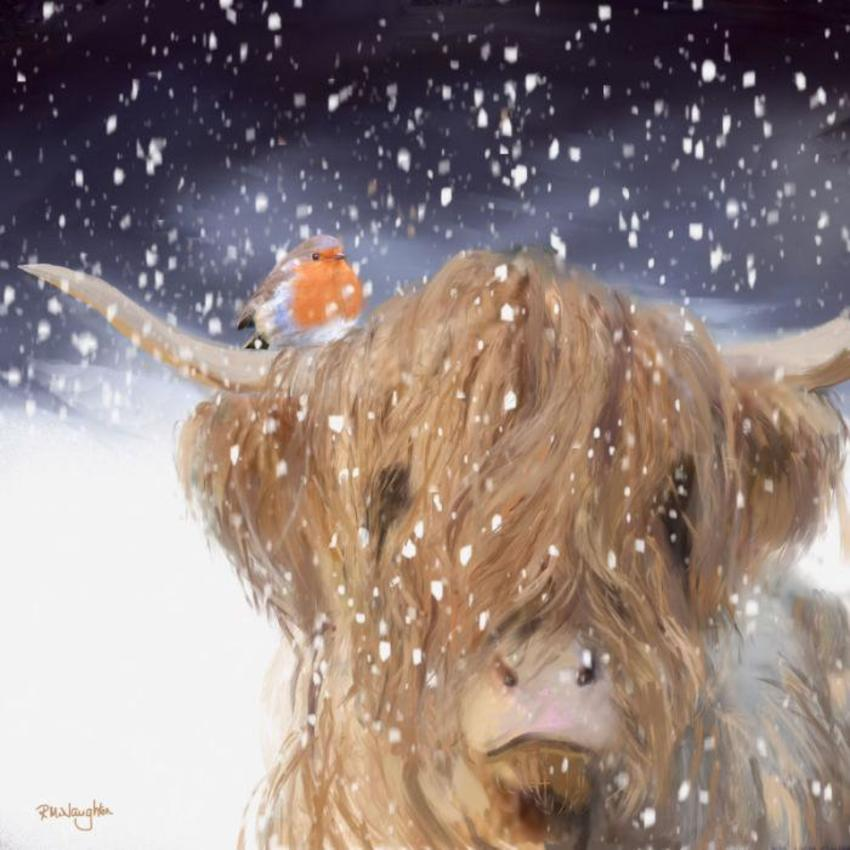 Robin And Highland Cow