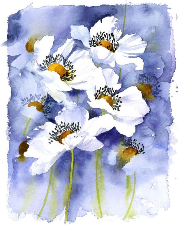 517 - White Flowers.jpg