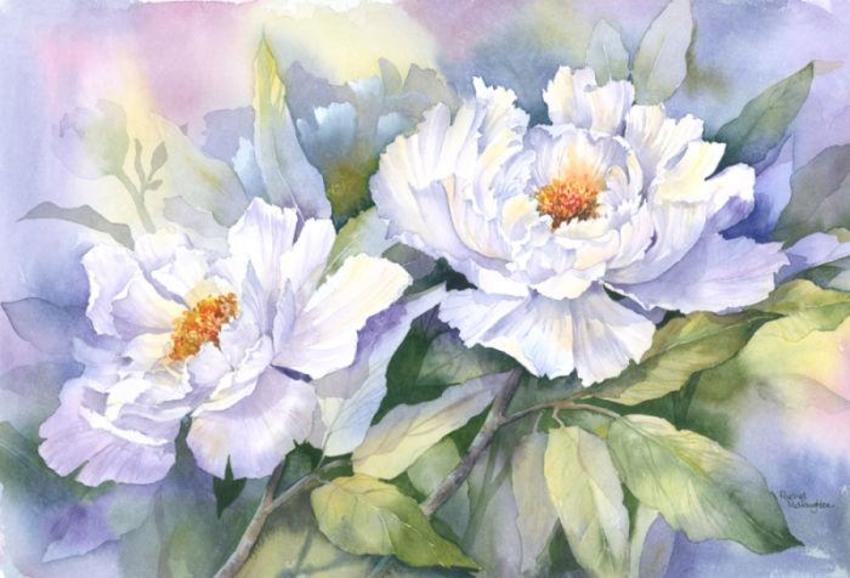 057 - White Peonies.jpg