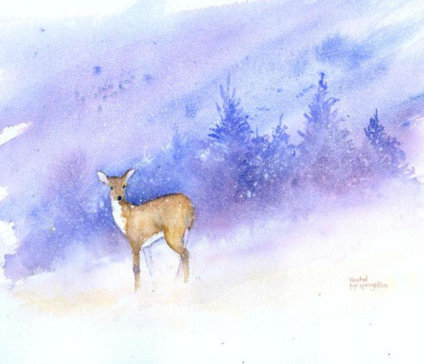 Snow And Deer