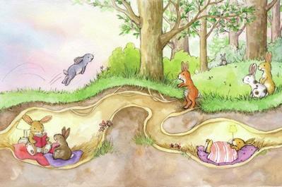 rabbits-playing-at-sunset-gail-yerrill-portfolio