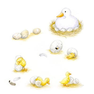 the-ugly-duckling-ducklings-hatching-gail-yerrill