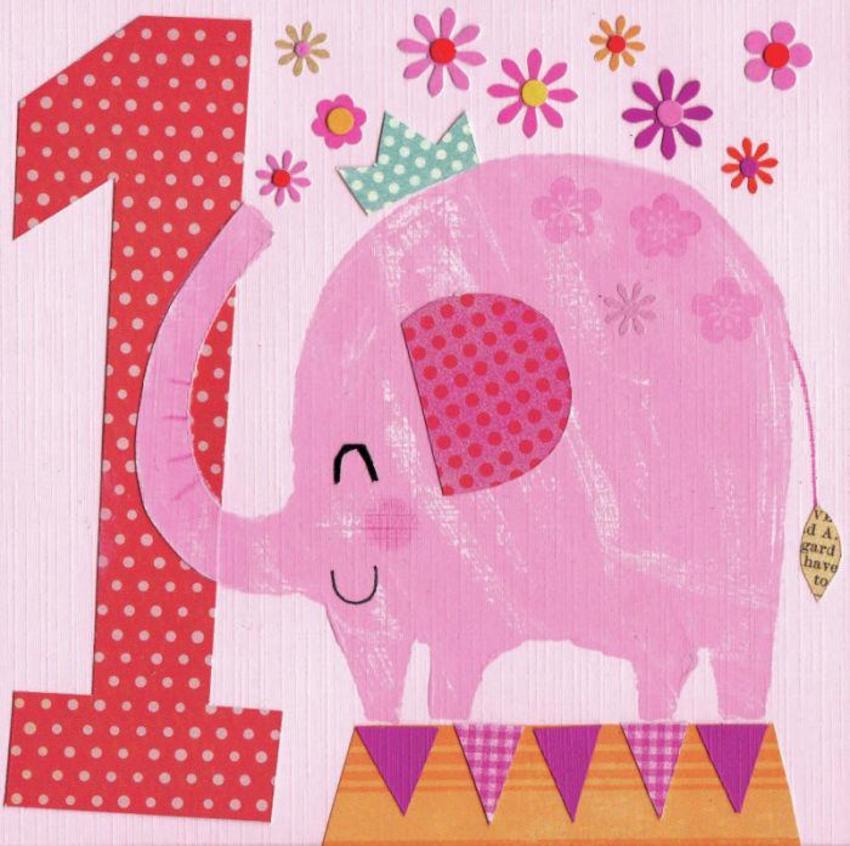 Age 1 Girl Elephant