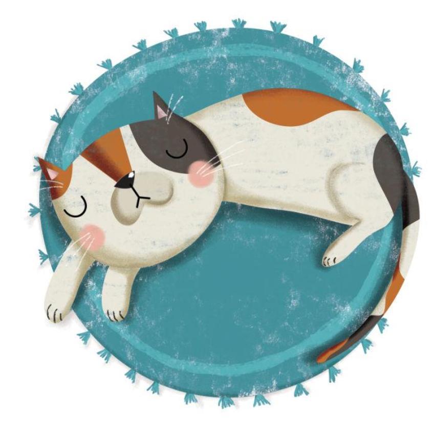 Cat Sleeping - Gina Maldonado