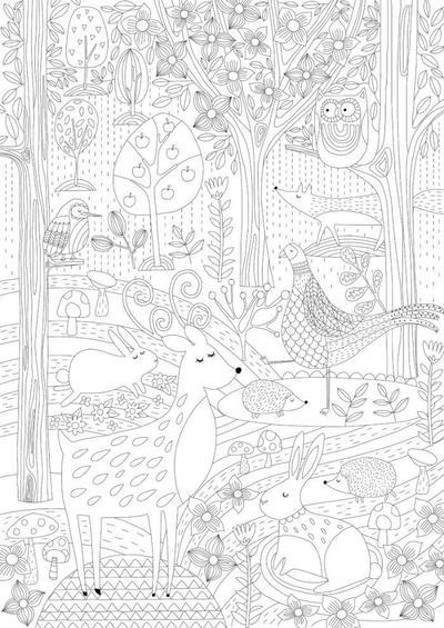 woodland-4