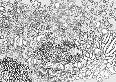 underwater-fish-coral-70