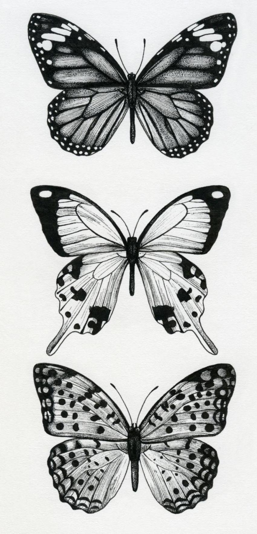LA - Butterflies
