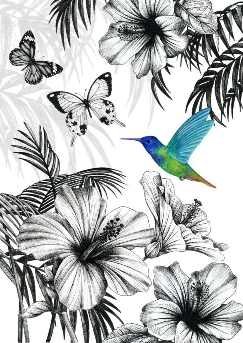 LA -botanical Tropical Hummingbird