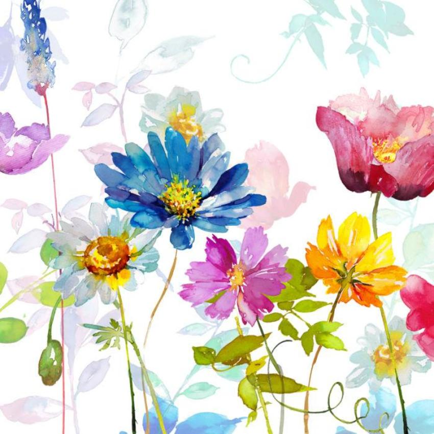 Square Daisy & Poppy Floral Copy Copy