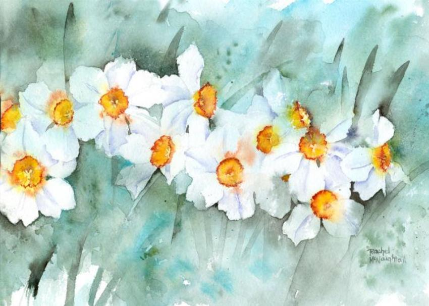 Narcissus In Line