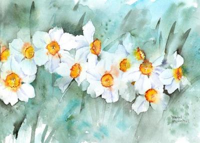 narcissus-in-line