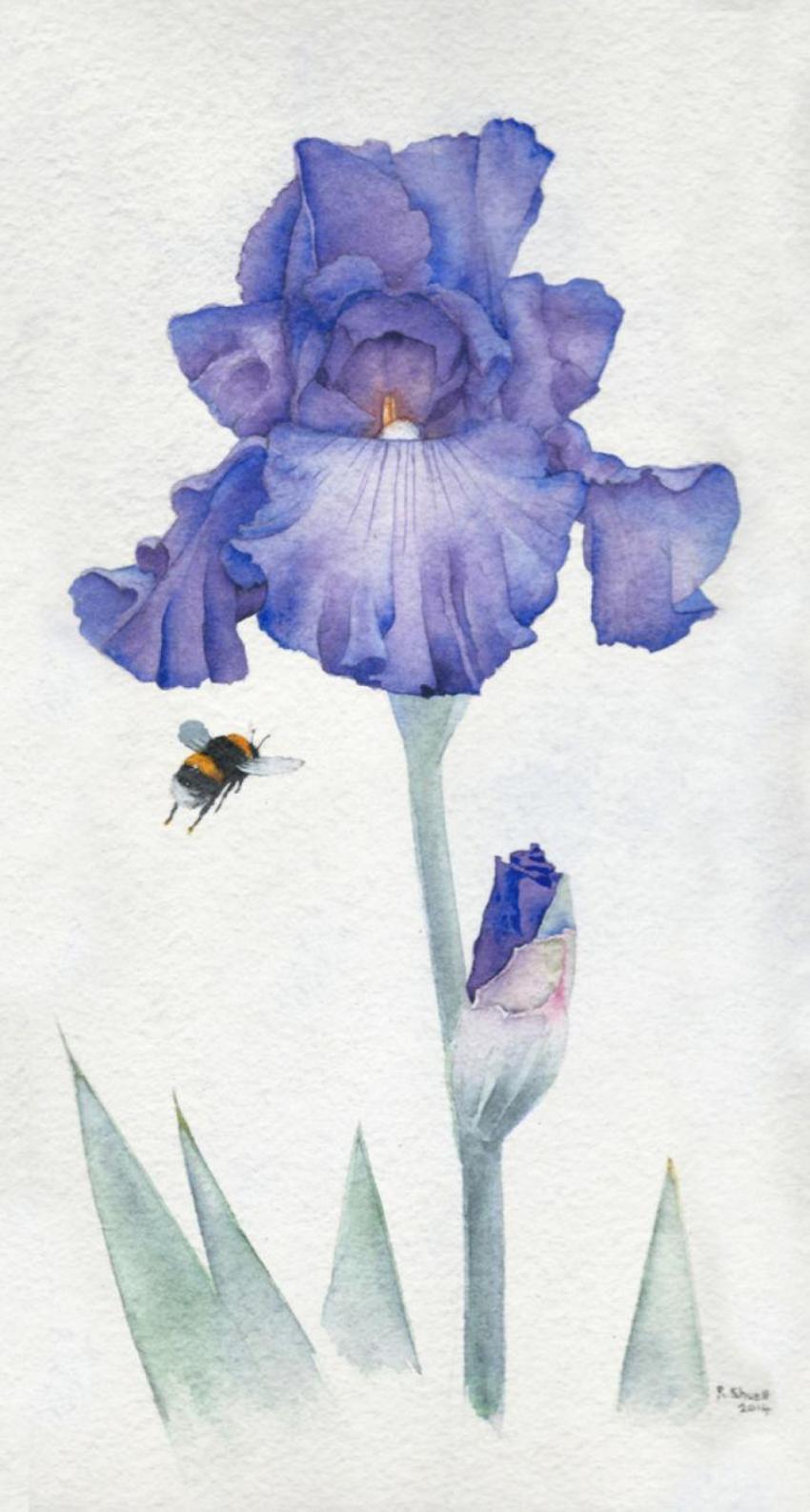 Wall Art Bee Iris