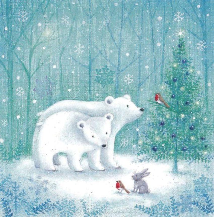 2 Polar Bears
