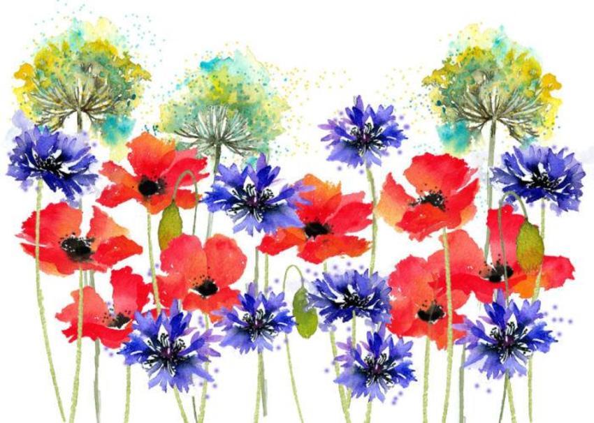 Poppies Parsley And Cornflowers