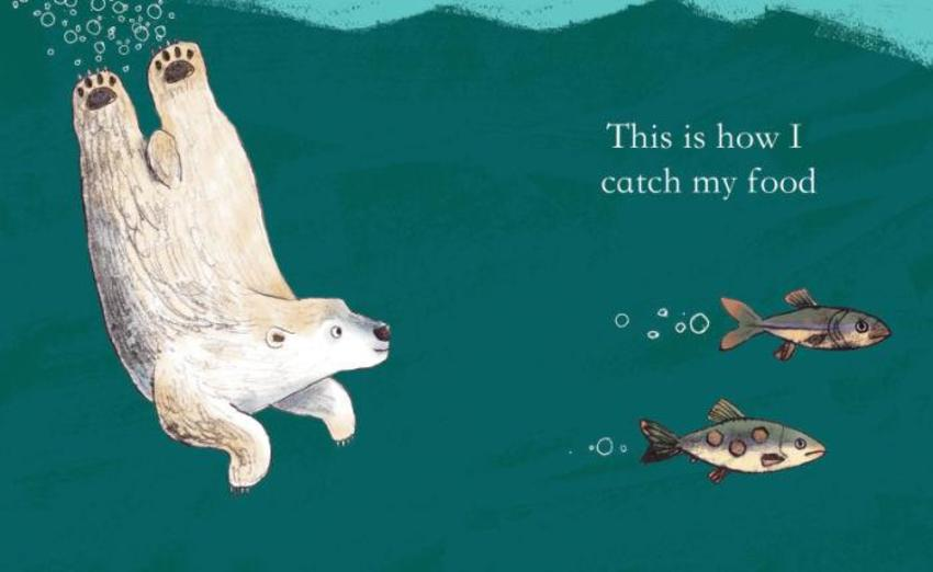 Adam Pryce Polar Bear