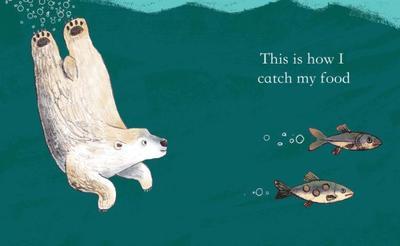 adam-pryce-polar-bear