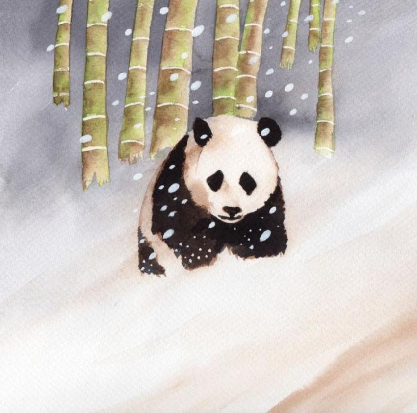 Panda Snow Cute 2