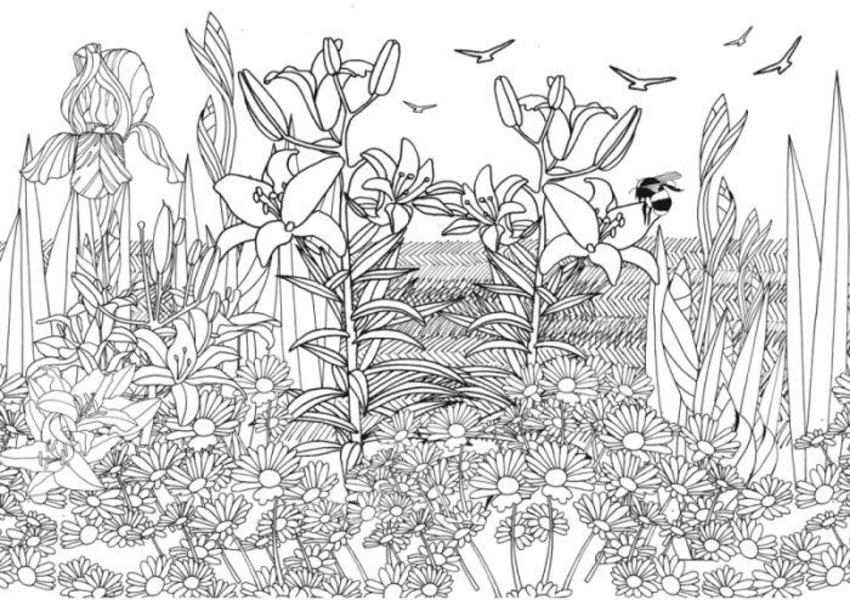 Bee And Lilies Adult Colouring 100dpi