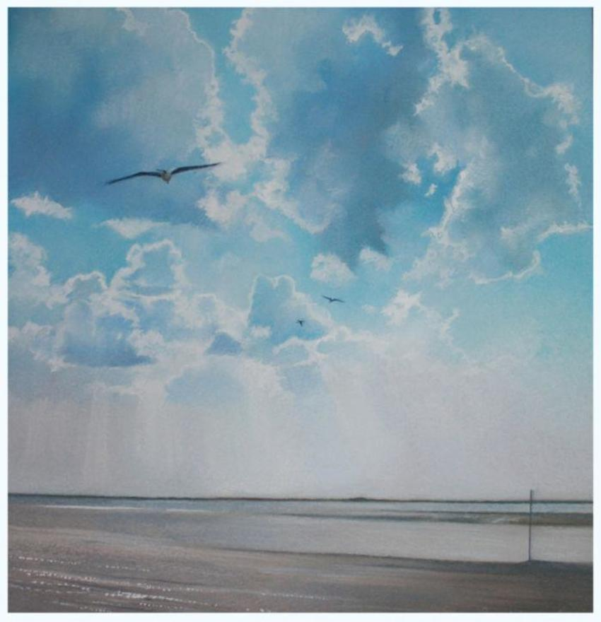 Seagull Over Burnham