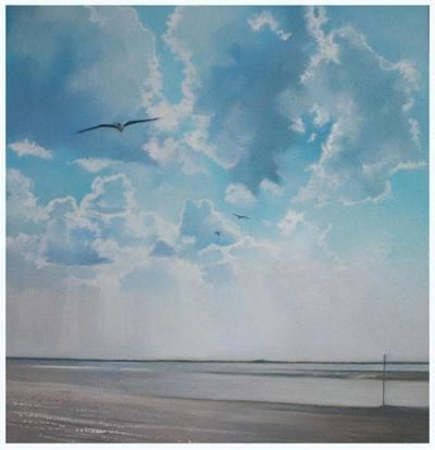 seagull-over-burnham