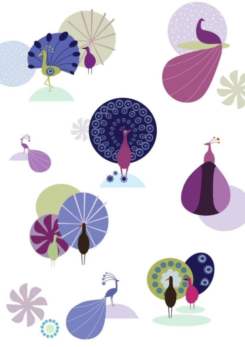 Graphic Peacock Pattern