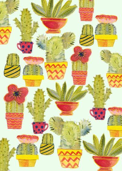 giovana-cactus