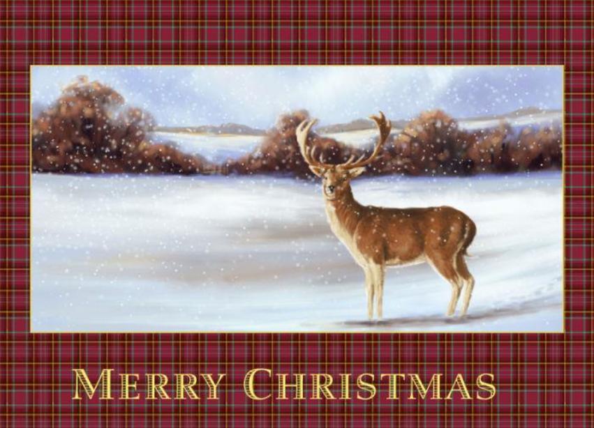 Deer Tartan.jpg