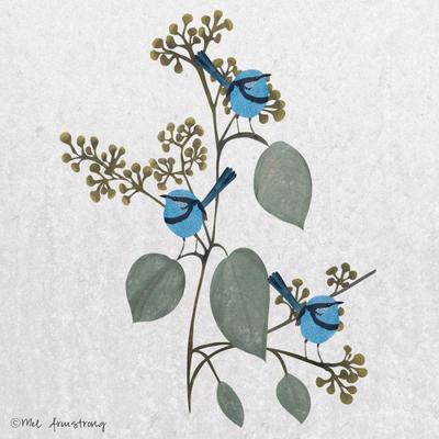 seeded-eucalyptus-and-wren-bird