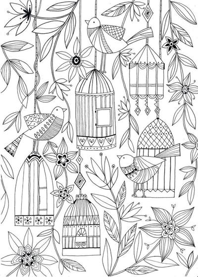 liz-and-kate-adult-colouring-birds-1