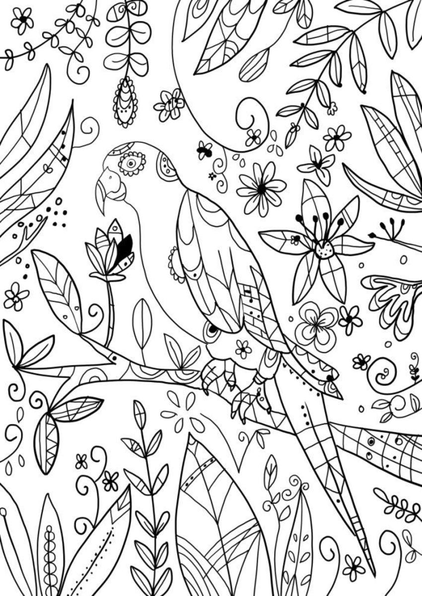 Adult Colouring-Design5-Nmoore