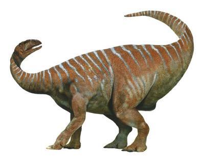 plateosaurus-aw-jpg