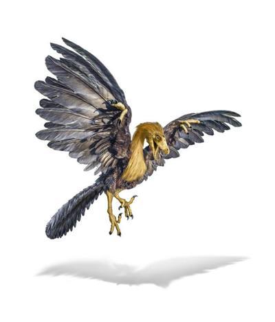 val-dinosaur-archaeopteryx