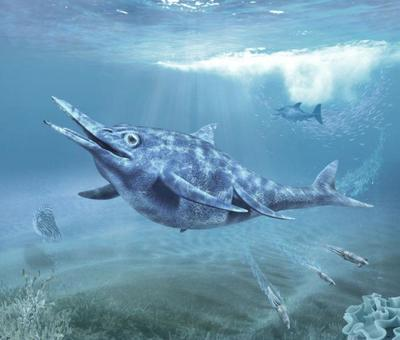 val-dinosaur-shonisaurus