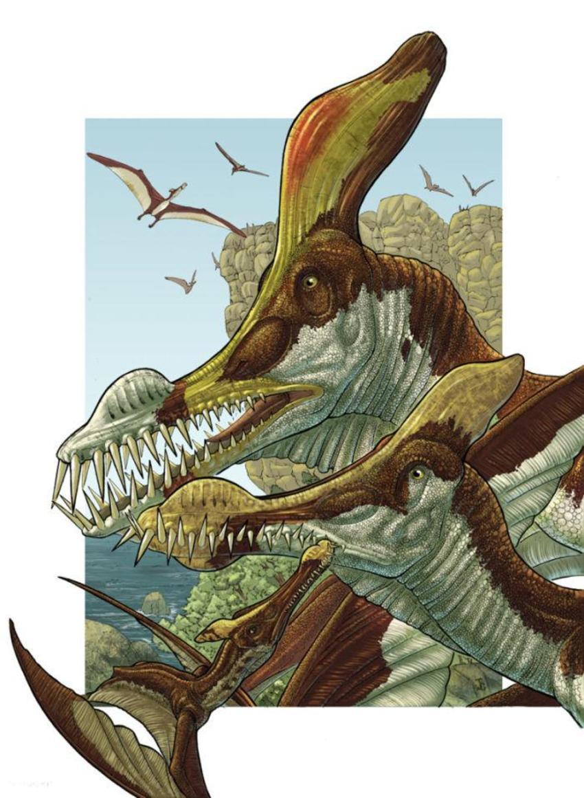 JuanCalledinosaursample03
