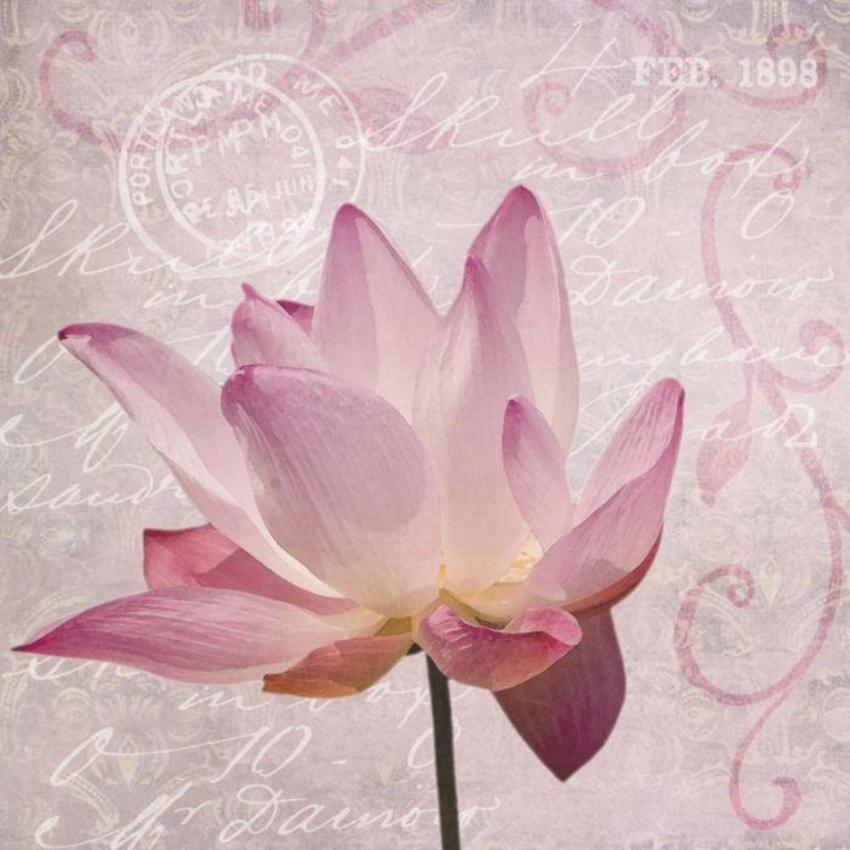 Lotus2 Ebenen