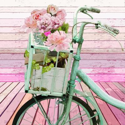 ld899-wallart-bicyle-cutout