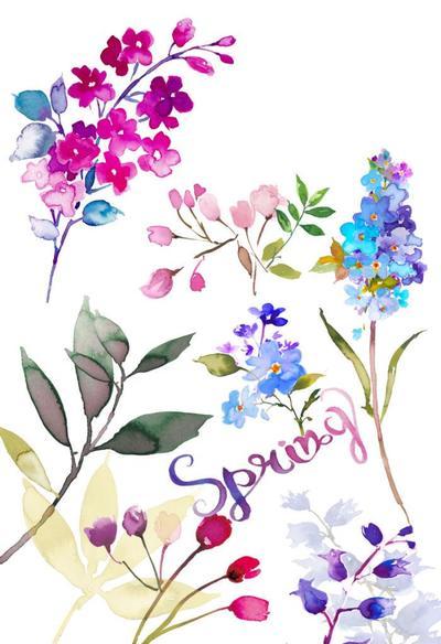 spring-flowers-4-j-jpeg