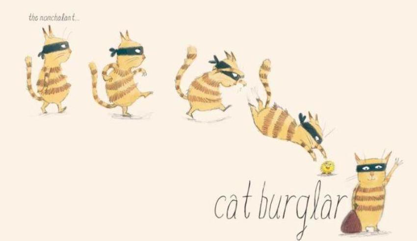 Cat-burglar
