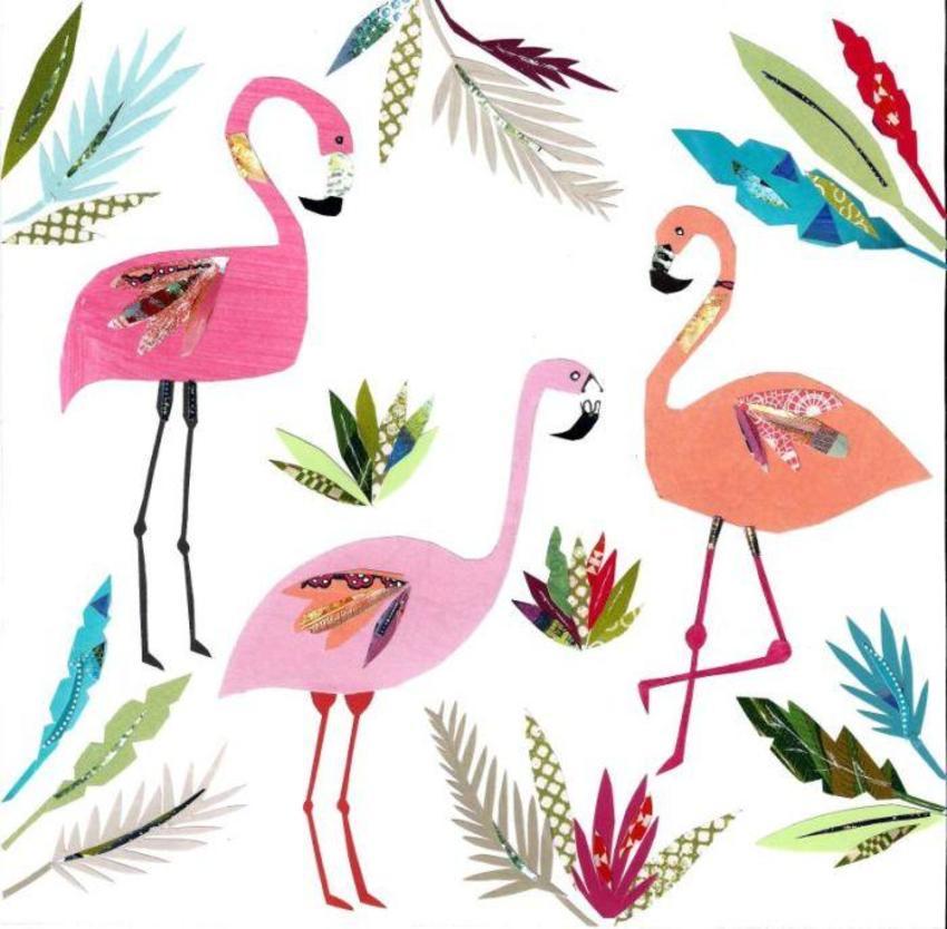Pope Twins PT - Tropical Flamingo