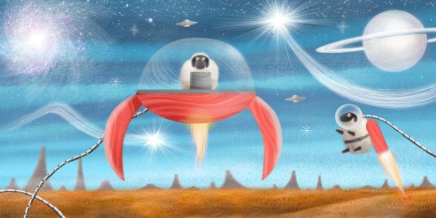 Spaceship And Sheep
