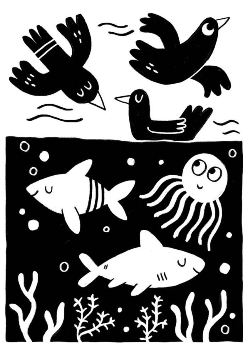 Fishbirds