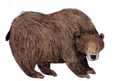 adam-pryce-sitting-bear