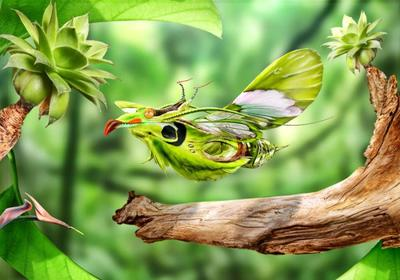 fg-avianosa-fictional-geographic-sf-animal-jpg