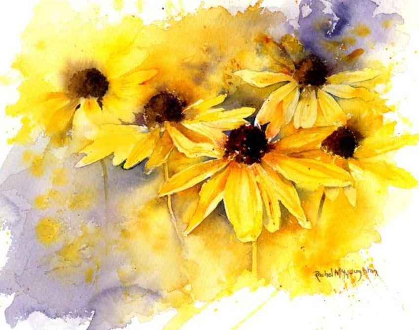 Yellow Rudbeckia 5X7