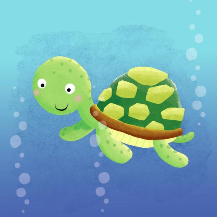 Seaturtle Copy